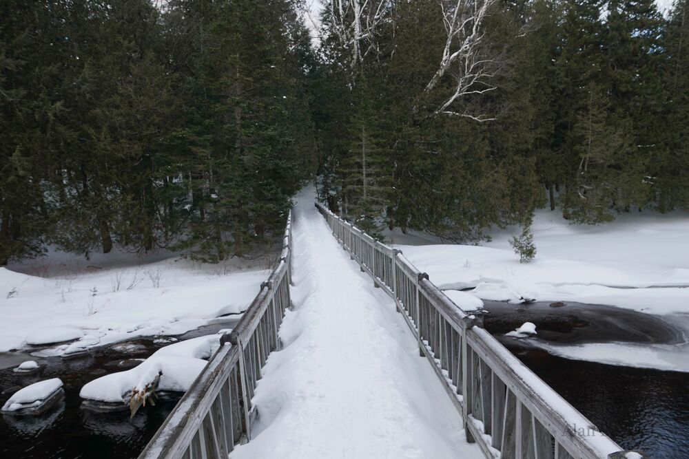 The snow was so deep on the bridges (such as this one crossing Sucker Brook) that I felt like I towered over them.